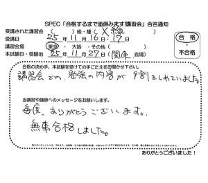 X_2013_1116_01